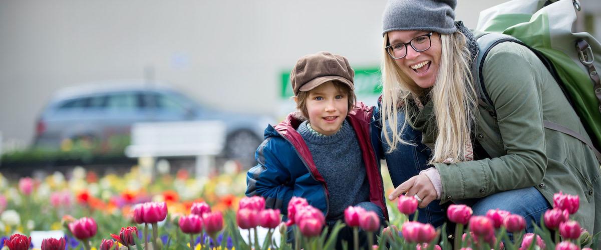 5 Tulpenfest Gönningen Fotografen Reutlingen